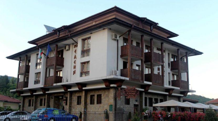 Хотел Елени палас